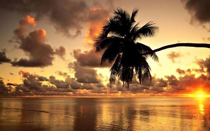 sunrise reflection beach