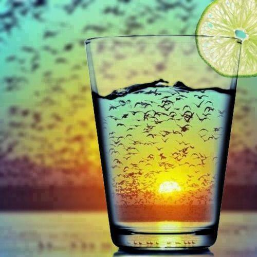 glass inspiring photography