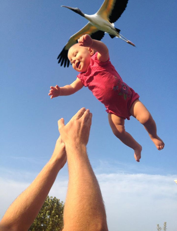 perfectly timed photos -  17