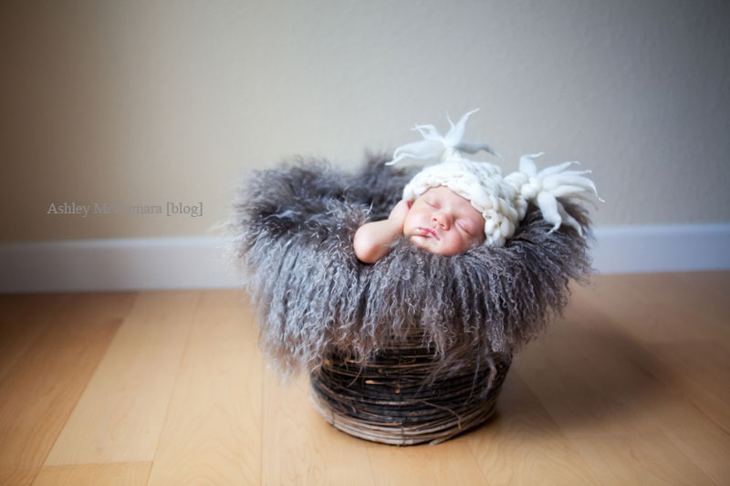 newborn photography by ashley mcnamara -  19