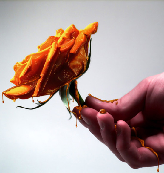 rose photo manipulation
