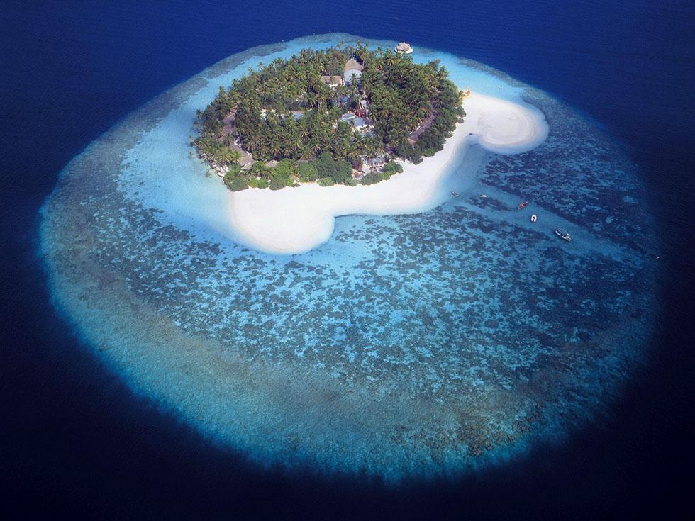 tropical island maldives aerial photography -  24