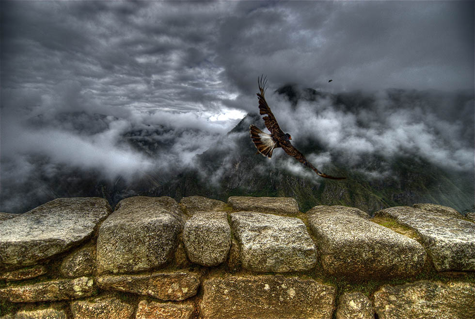 eagle hdr photography