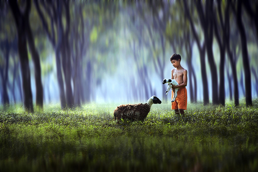 billy goat photography by ipoenk graphic