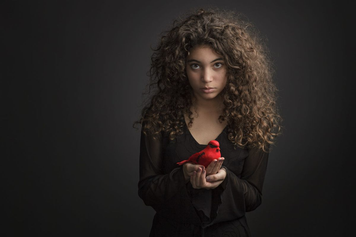 portrait photography red bird by regina pagles