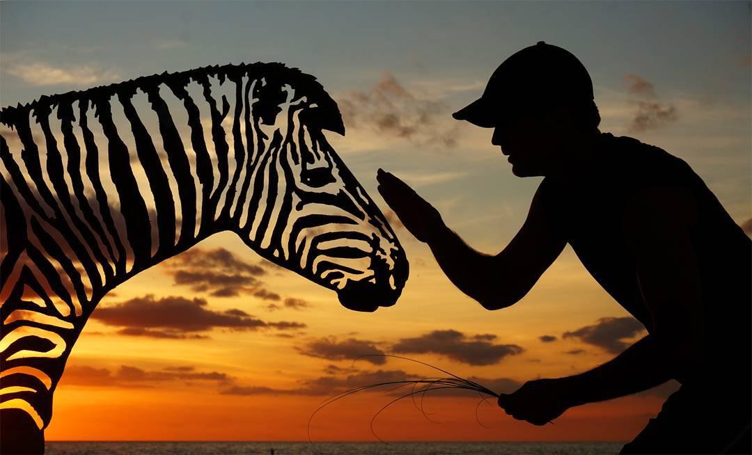 silhouette photography cardboard cutout zebra by john marshall