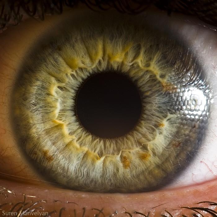 macro photography human eye by suren manvelyan