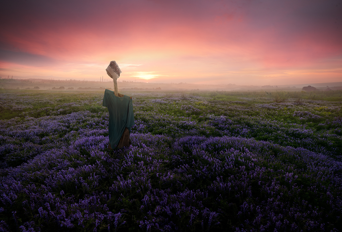 photography nature scarecrow by denis bodrov