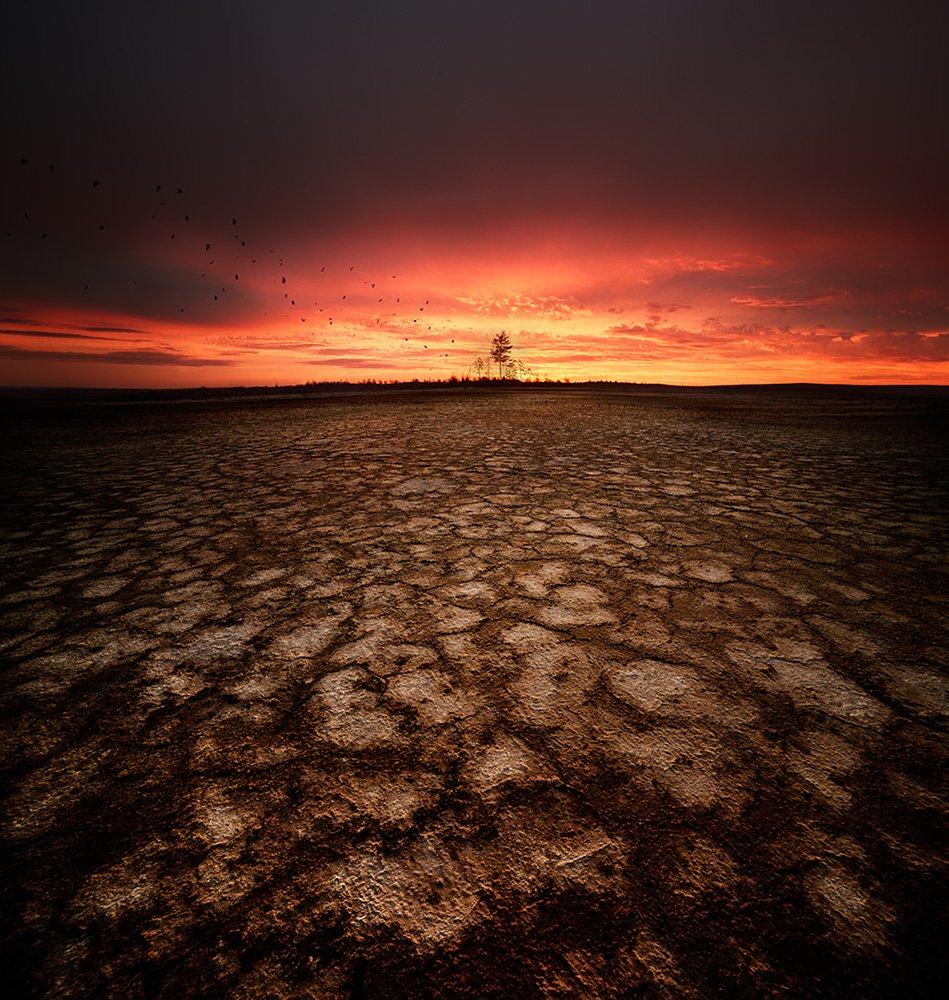 photography landscape dried land by denis bodrov