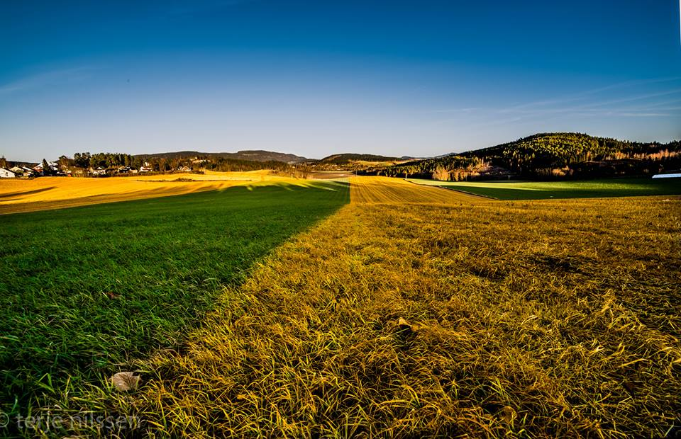 agriculture land nauture photography by terje nilssen