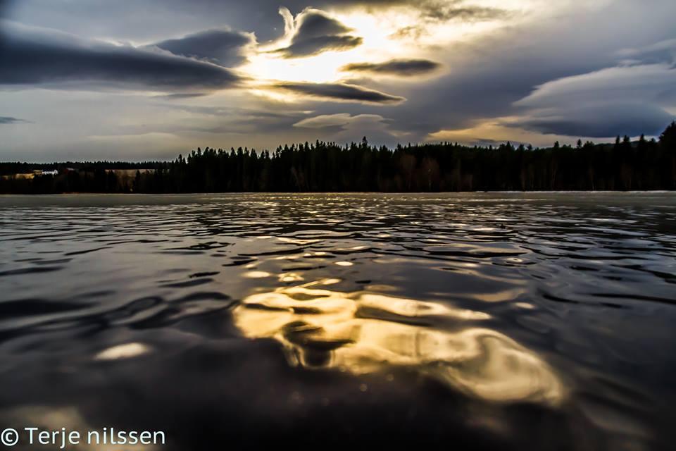 steinkjer nauture photography by terje nilssen