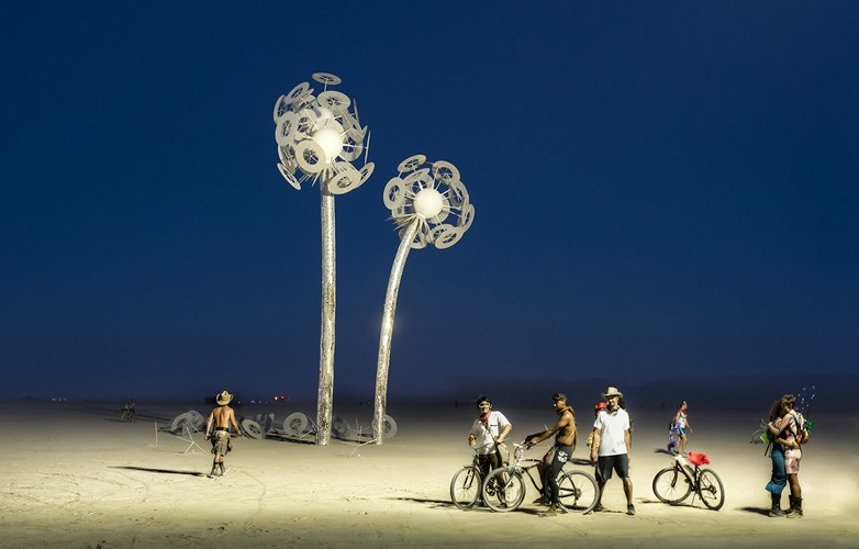 lily white flowers burning man photograph by trey ratcliff