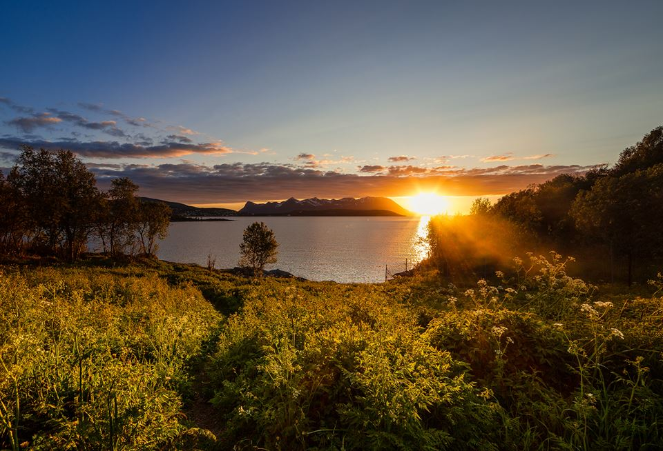 sunbeam nauture photography by terje nilssen