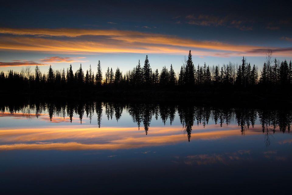 travel photography trees reflection by dave brosha