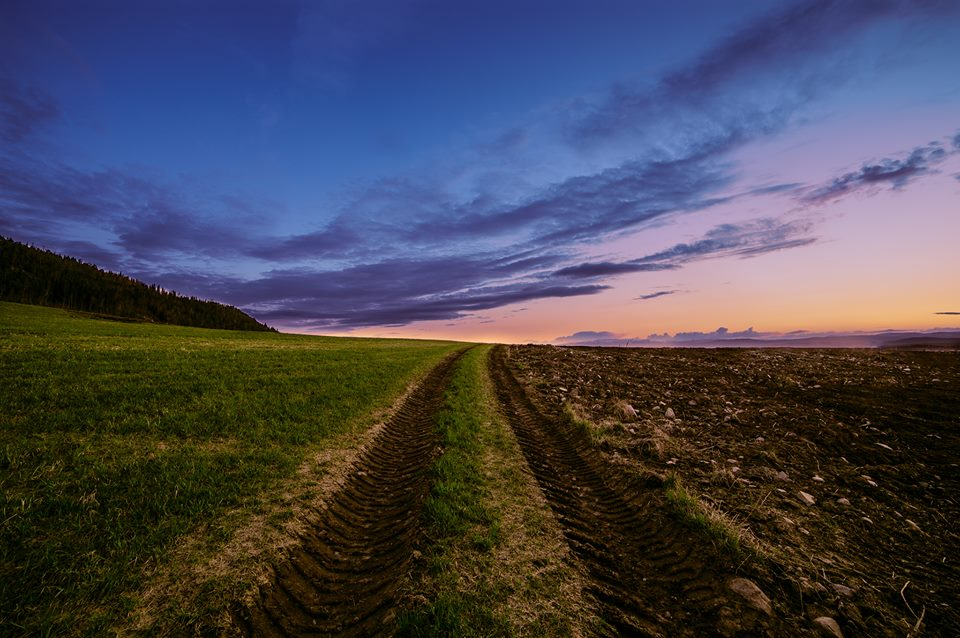 sunset nauture photography by terje nilssen