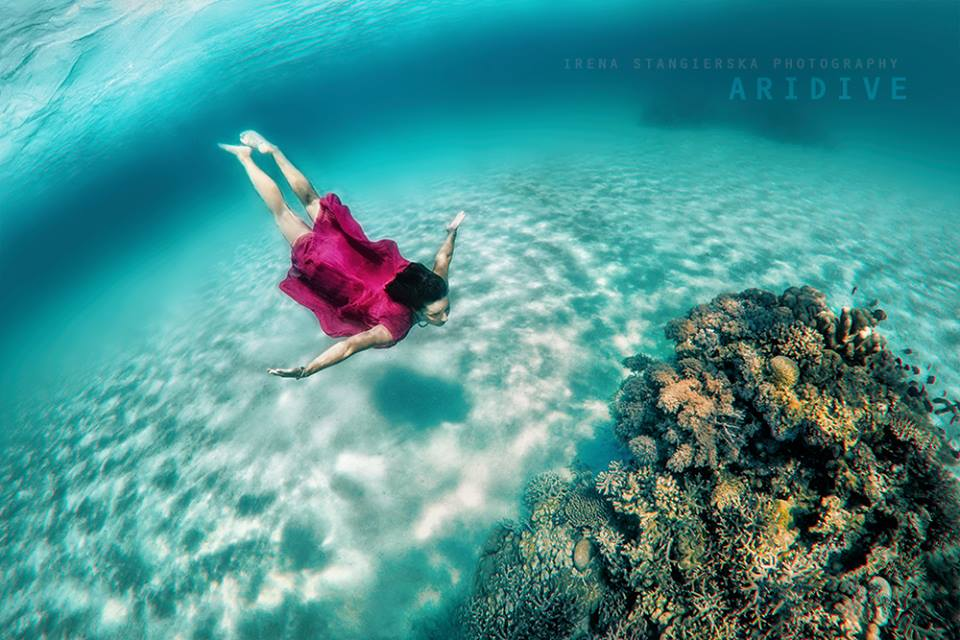 underwater photography by irena stangierska