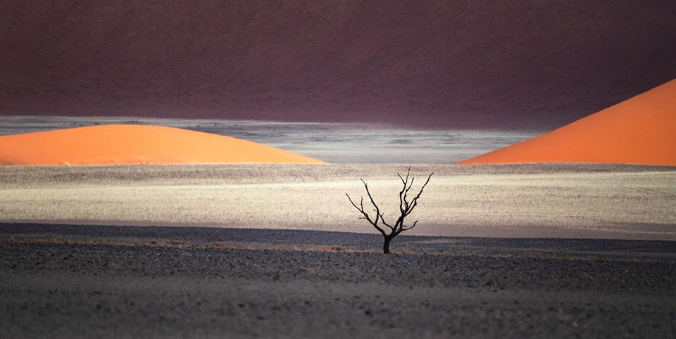 travel photography desert by dave brosha