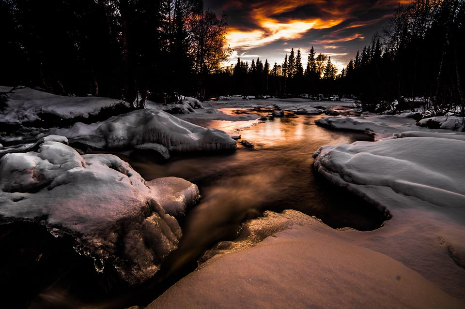 golden river nauture photography by terje nilssen