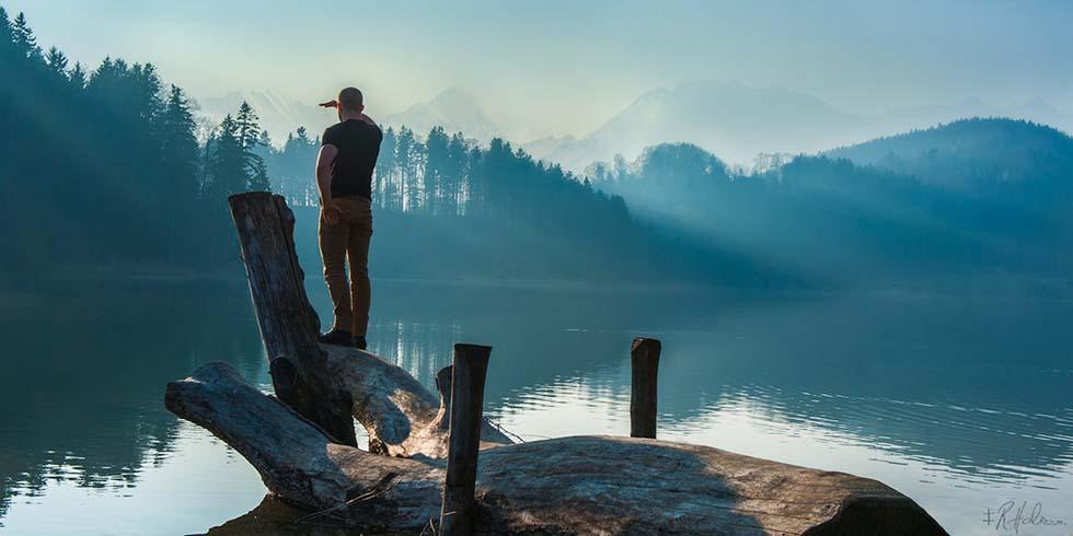 natural photography robin