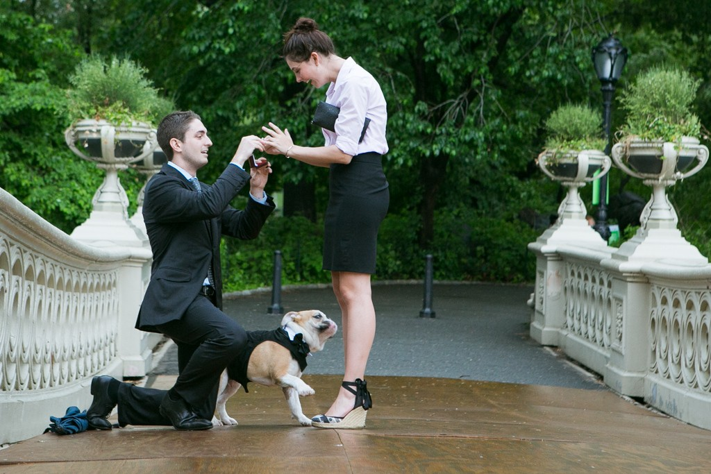 1 marriage proposal photography by vlad leto