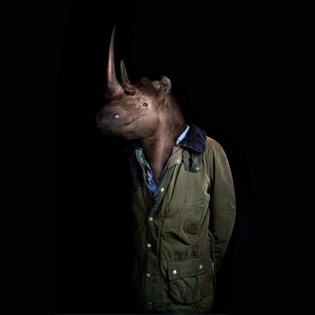 rhinoceros wildlife portraits by miguel vallinas