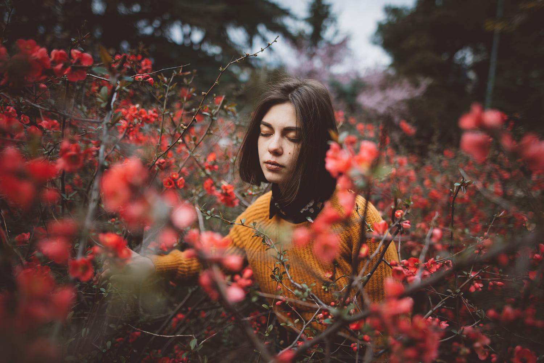 award winning spring photography by alex karamanov