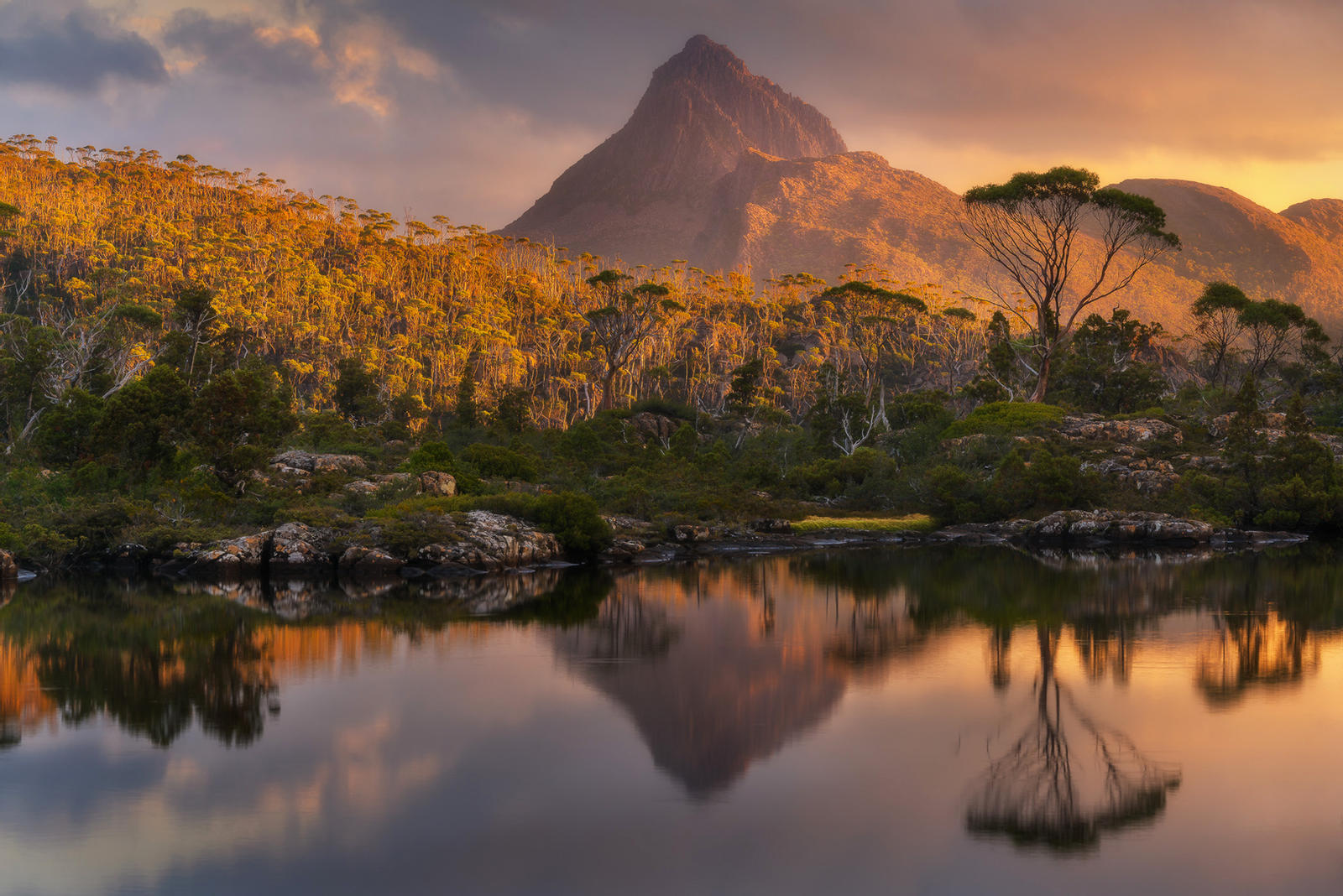 lanscape photography gold gould by everlook photography