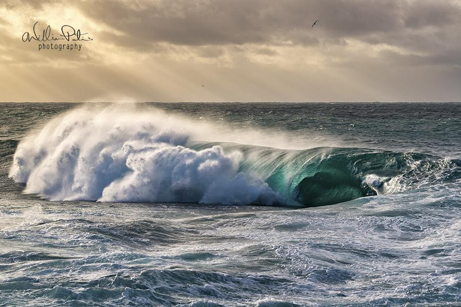 wave photography by william patino