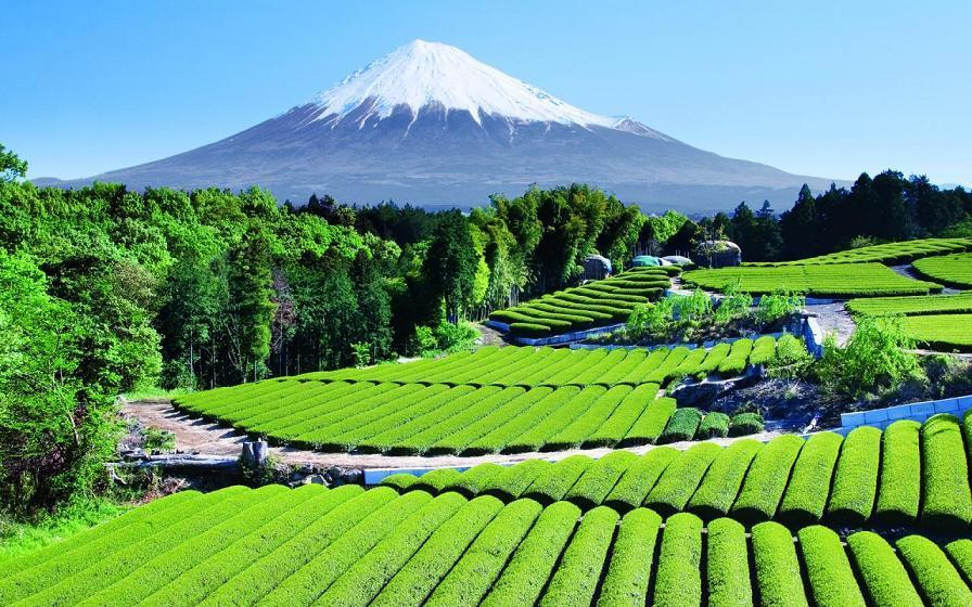 9 mount fuji japan beautiful places