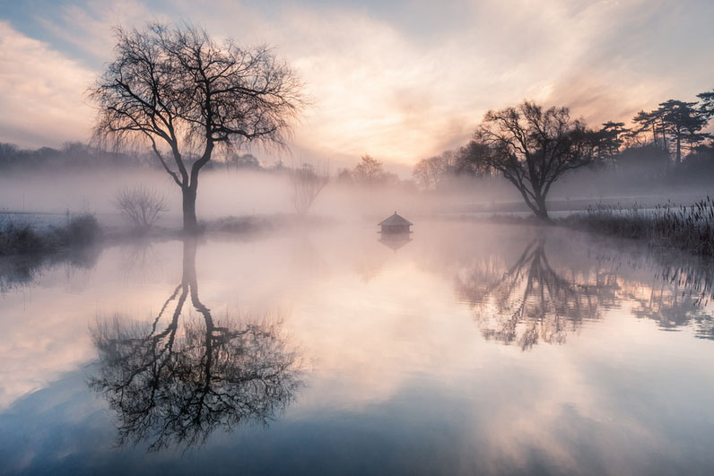 nature photography by finn hopson