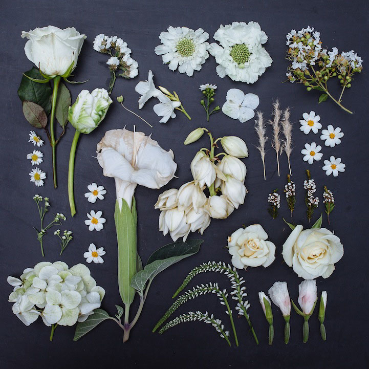 4 arrange objects photography idea white flowers emily blincoe