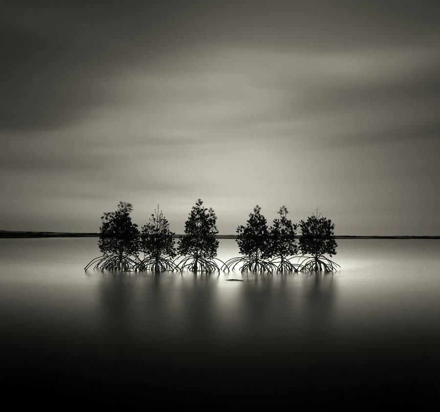 black and white photography by by firman