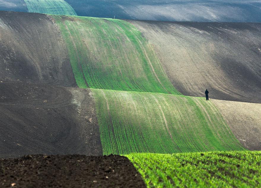 10 nature photography by przemyslaw kruk