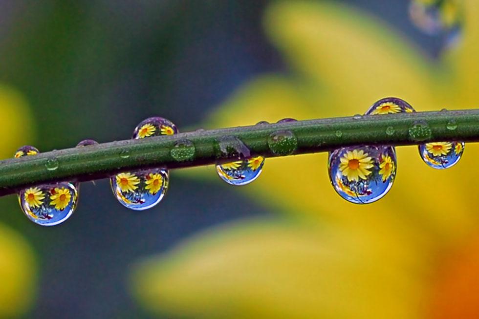 11 rain photography