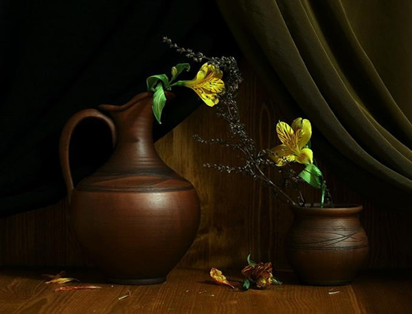 12 flowers still life photography