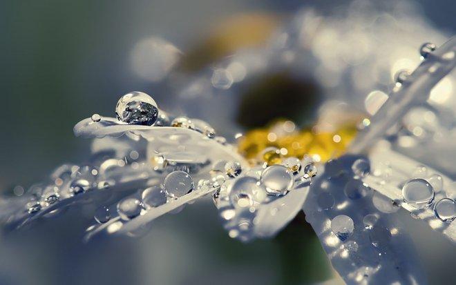 13 rain photography