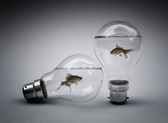 14 bulb photo manipulation