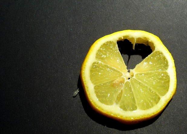 14 lemon still life photography