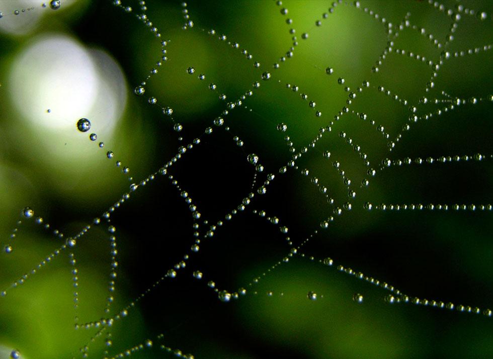 14 rain photography