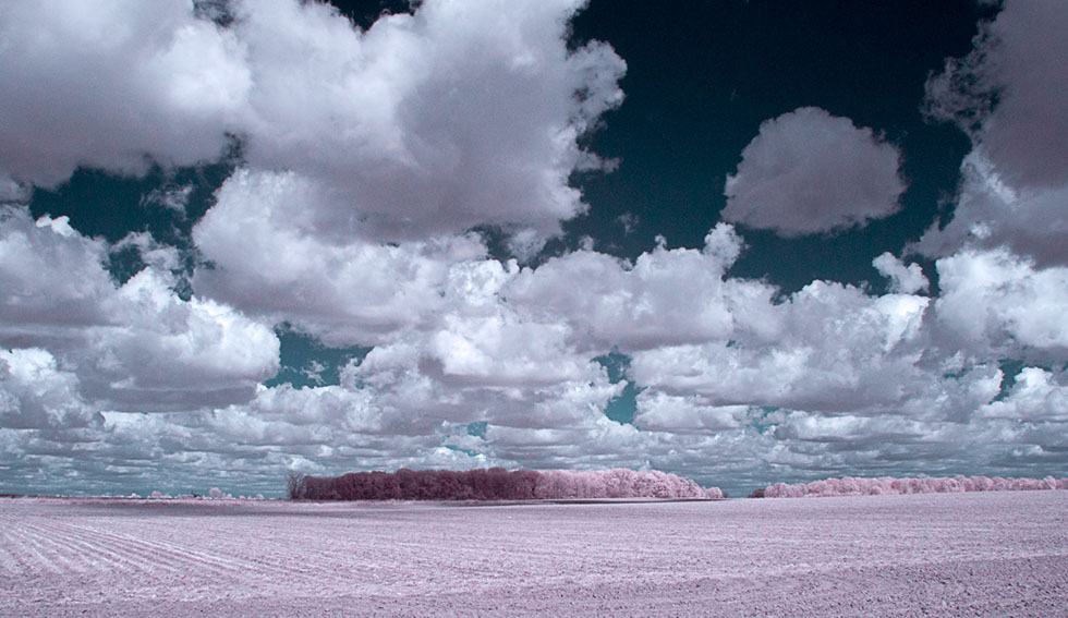 infrared photography -  17
