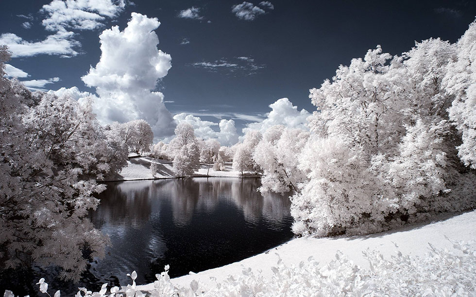 infrared photography -  19
