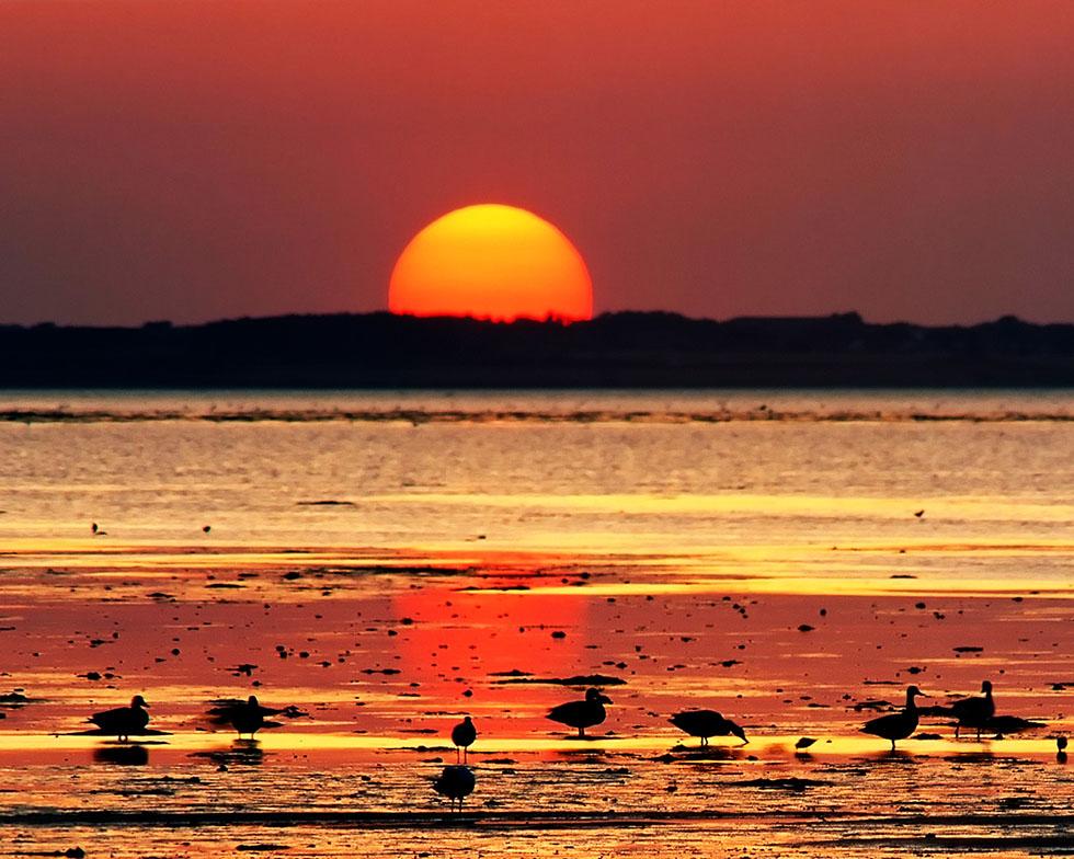 2 sunset photography