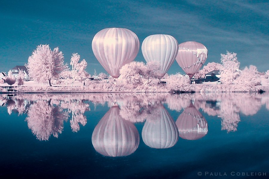infrared photography -  20