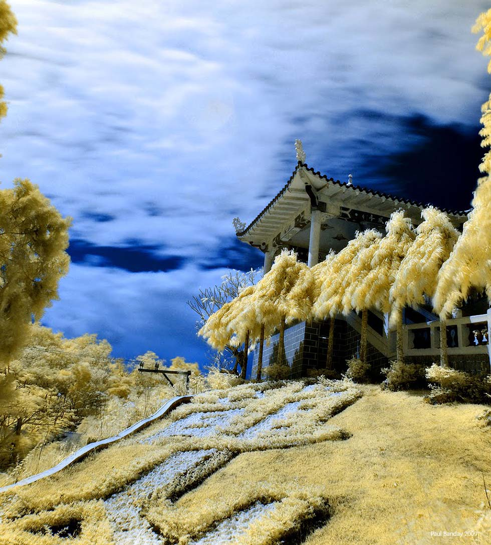 infrared photography -  21