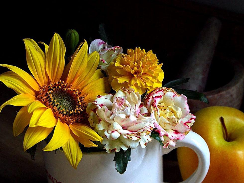 22 flowers still life photography