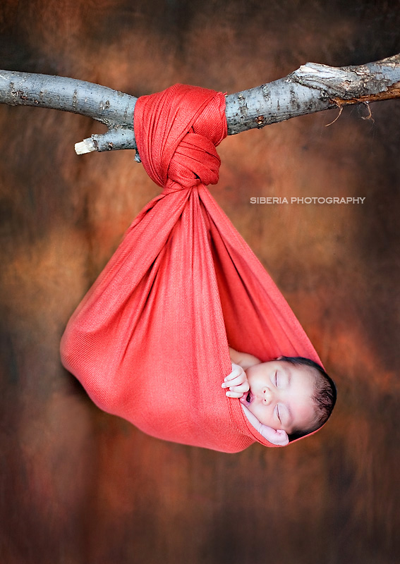 22 newborn photography