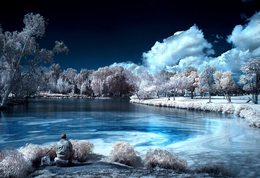 infrared photography -  3