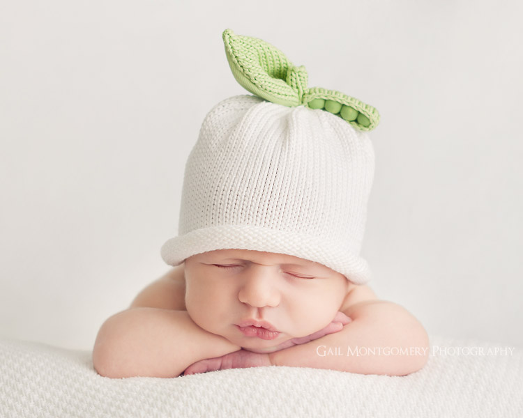 4 baby photography by gail montgomery