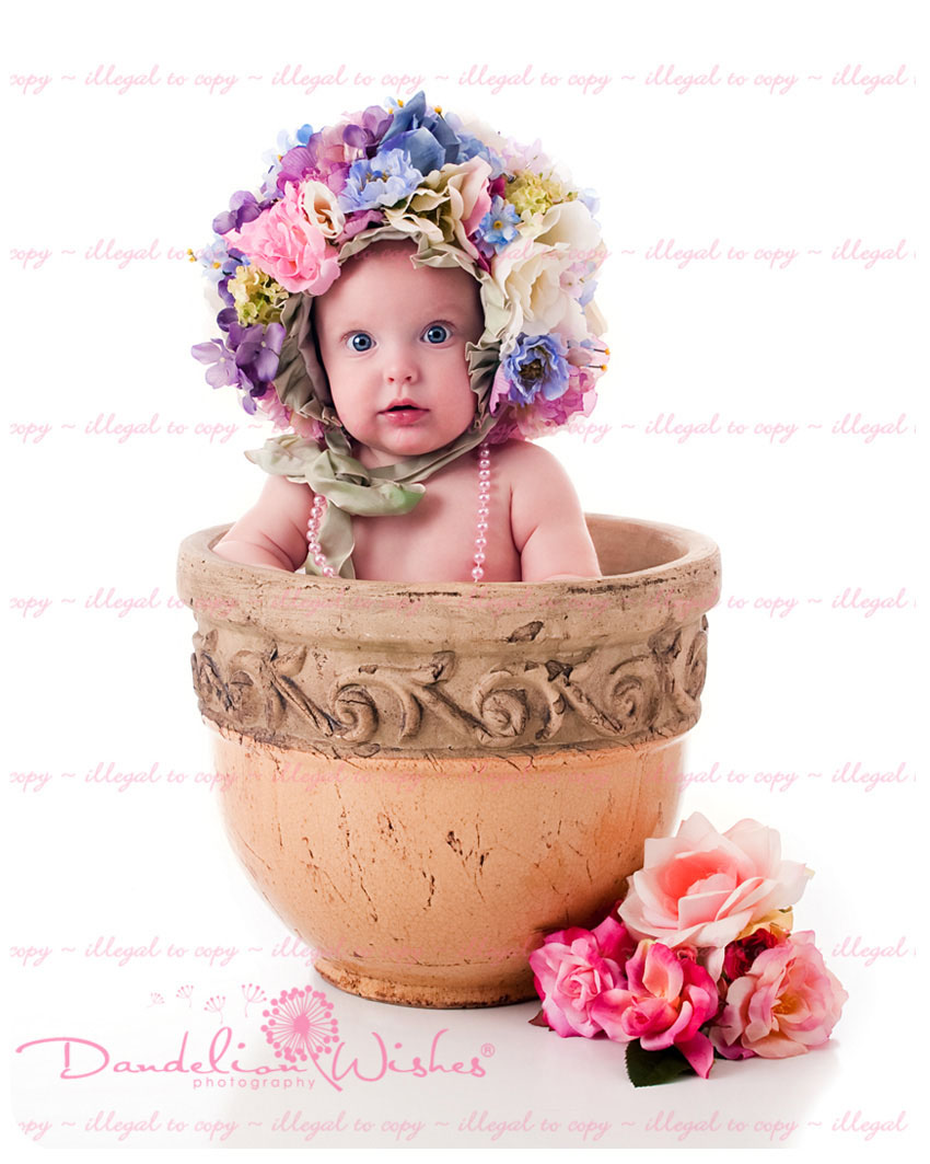 5 newborn photography