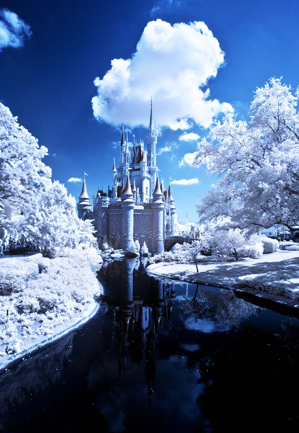 infrared photography -  7